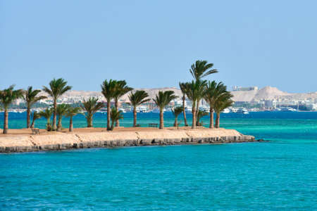 Island with palm trees on the Red Sea in Egypt.