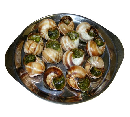 dozen: snails of burgundy, the french speciality Stock Photo