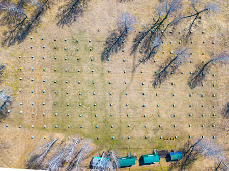 Aerial view of an apiary with a large number of hives resembling small square houses of various colors in the middle of a yellow field and trees next to four green buildings on a clear sunny day Stok Fotoğraf
