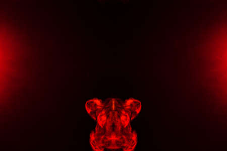 A red smoky pattern in the shape of an animal or car moves up between two red lights.
