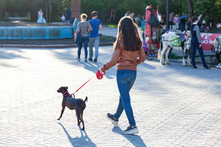 A young girl in a brown jacket walks in the park among a large number of people with a pinscher dog on a red leash on a warm summer sunny day.