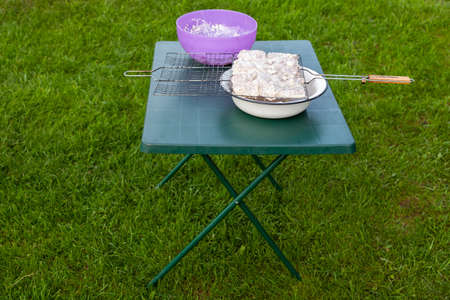 Green country folding table on the grass with a purple plate and a standing open wire rack in a white bowl with pickled meat in large pieces.