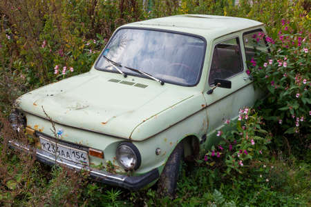 Novosibirsk, Russia - 09.19.2020: An old abandoned car with peeled paint and disassembled parts of the ZAZ brand of the Soviet past, overgrown with grass and wildflowers.