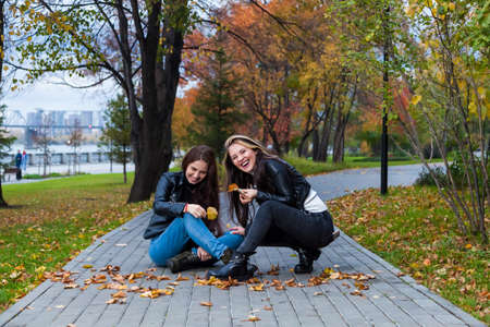 Two young women collect fallen leaves in the park, squatting on the sidewalk against the backdrop of yellow craft trees and herbarium and laughing at them.