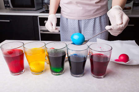 Preparing for Easter - coloring eggs in home kitchen female hands in rubber gloves use spoon take boiled egg out of glass with diluted blue dye next other glasses different colors with submerged eggs.