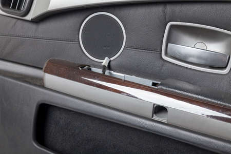 Luxury car door interior with leather upholstery and speaker grille.