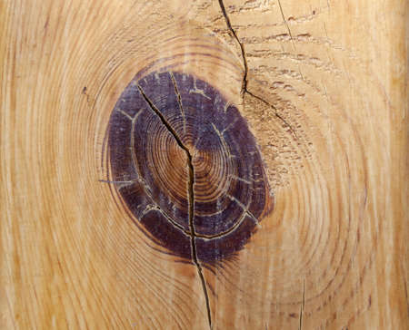 Old wooden board with Timber Knot for Background or Texture. Macro shot. Stok Fotoğraf