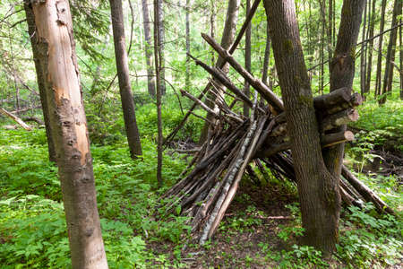 Survival shelter in the woods from tree branches. Cone or pyramid shape shelter. Stok Fotoğraf