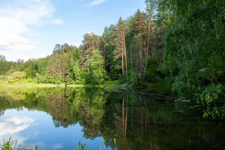 Autumn landscape. Trees reflection on calm blue water. Green forest reflected in lake. Blue background. Clear sky. Tranquil place. Green coastline of island. Perfect reflection. Morning light. Stok Fotoğraf
