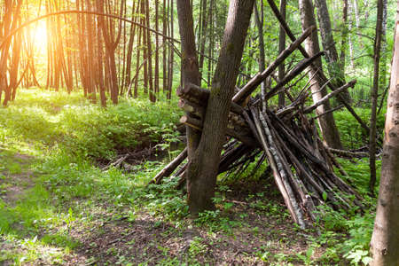 Survival shelter in the woods from tree branches. Cone or pyramid shape shelter. Stock fotó