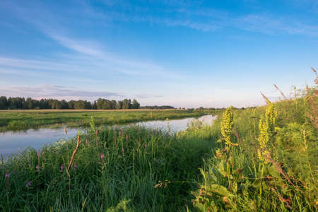 summer nature: The river in the village in summer sunset time. Russia nature Stock Photo