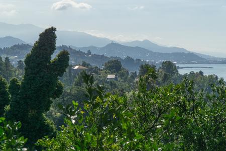 The sea view from the Botanical Gardens in Batumi, Georgia.