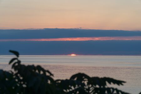 The view of the sun going into the sea on the horizon with the clouds through the tree branch