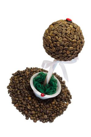 arbol de cafe: árbol de café sobre un fondo blanco y de grano se derrame