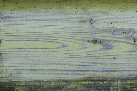 texture wood board in natural daylight 免版税图像
