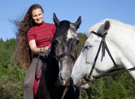 A girl with two horses in the woods in summer photo