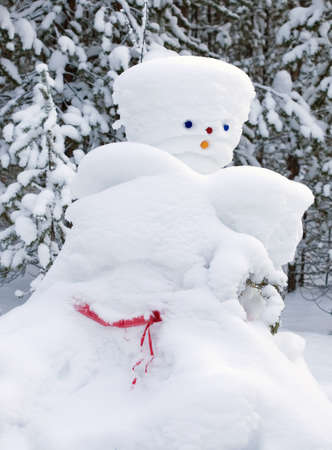 resourceful: Snowman made by nature and resourceful man. winter
