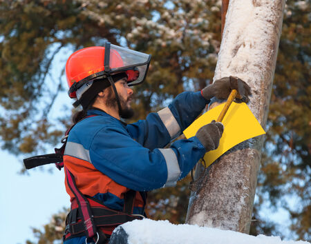 Electrician attaches to electricity pylon information sign in the woods in winter