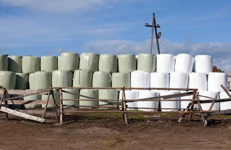 agricultural area: Hay bales packed in white plastic. Agricultural area in the region of Umba Russia. Stock Photo