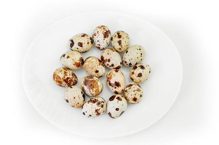 huevos de codorniz: quail eggs on a white plate Foto de archivo