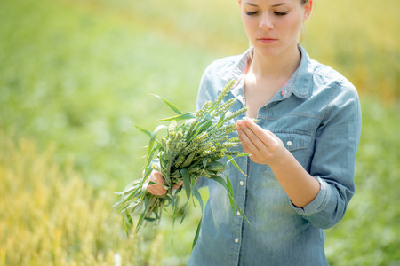 pretty woman farmer standing in green wheat field with ears of wheat harvest for analysis
