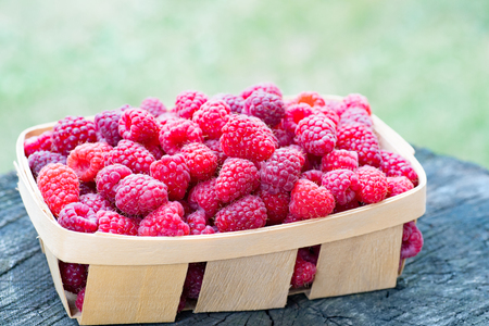 Side view of basket full of sweet ecologically grown raspberries, on wooden textured stump. Close-up Stock Photo