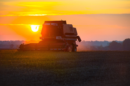 harvester harvesting on the field at sunset
