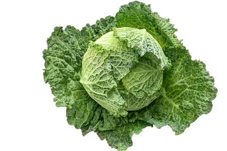 Fresh green savoy cabbage isolated on white background - High Angle View Фото со стока