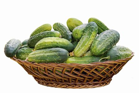 Basket with fresh cucumbers isolated on a white background Фото со стока