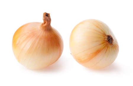 Ripe onion bulbs