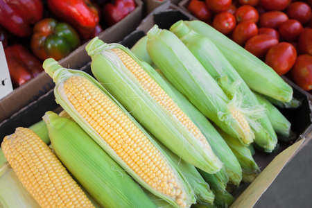 Ripe corn cobs in the open air market. High quality photo Stock Photo