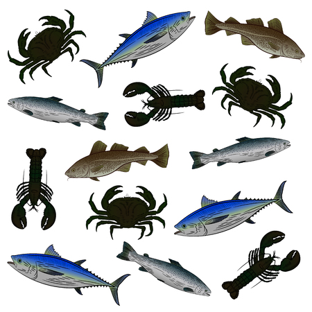 A set of color drawings on the theme of seafood. Salmon, tuna, cod, lobster, crab. Vector illustration. Stock Illustratie