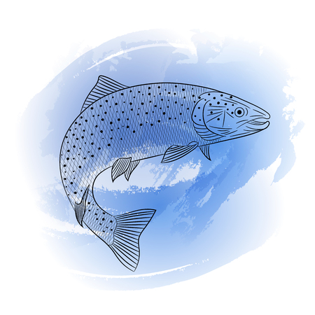 Drawn sketch of sea salmon fish on a blue background. Sketch, lines, splash, watercolor, paint, vector illustration.