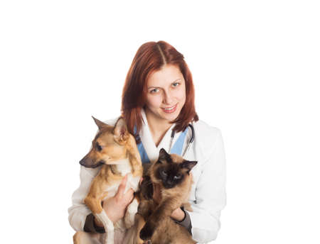 lovely young woman veterinarian holding a red puppy and Siamese cat on a white background isolated photo