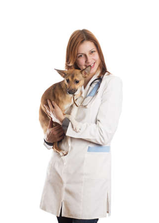 young woman veterinarian holding a puppy on a white background isolated photo