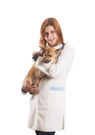 veterinarian with a pet on a white background isolated photo