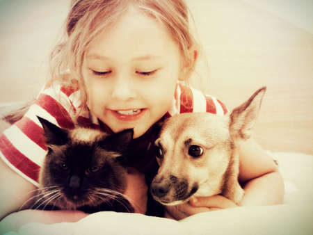 child and dog and cat photo