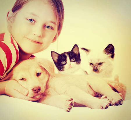 child hugging a puppy and kittens Stock Photo