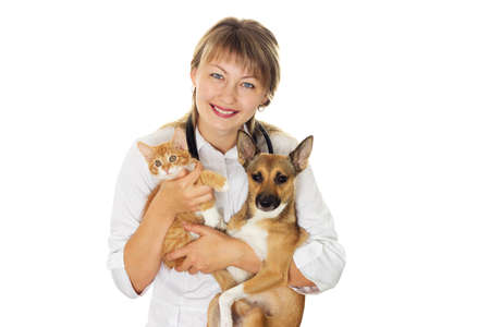 vet and puppy and kitten Stock Photo