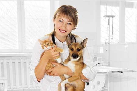 veterinario: sonriendo veterinario y perrito y gatito en la clínica Foto de archivo