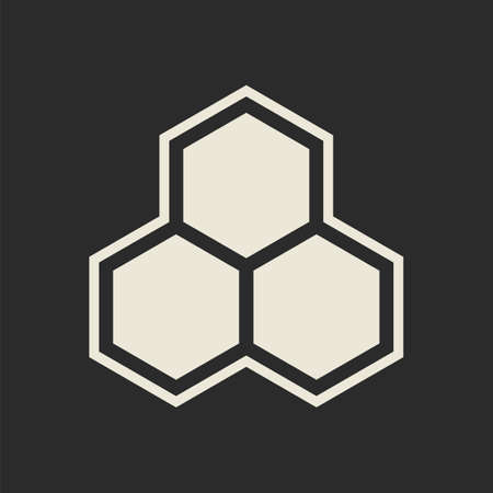 Hexagon icon  Honeycomb  Vector illustration Vector