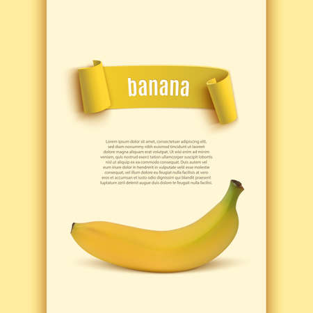 banana sheet: Background with realistic banana icon and yellow curved ribbon. Vector illustration Illustration