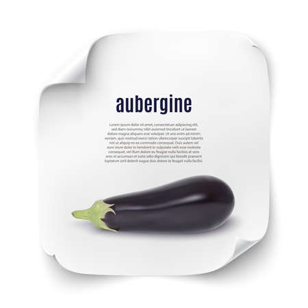 courgette: Background with realistic aubergine icon on white curved paper banner. Vector illustration