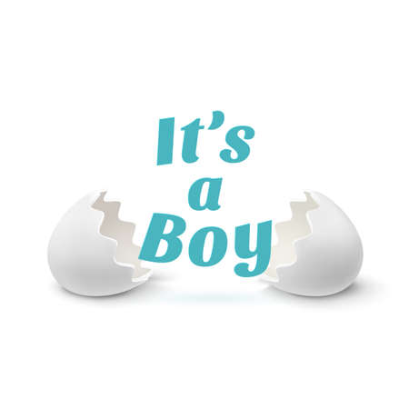 its a boy: Its a boy. Template for baby shower celebration, or baby announcement card. Two egg shells with text, isolated on white background. Vector illustration