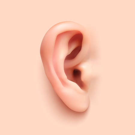 listening ear: Background with realistic ear. Temlate for your projects. Vector illustration.