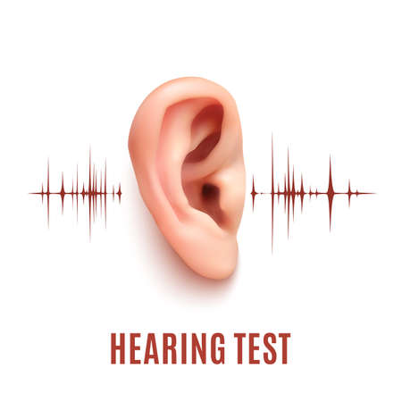Hearing test. Realistic ear on white background with sound waves. Vector illustration.