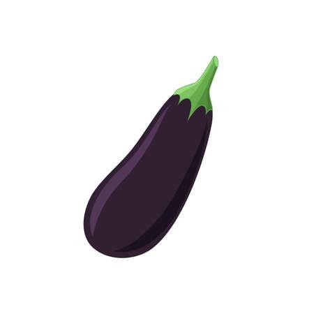 fruit and veg: Aubergine icon isolated on white background. Vector illustration. Illustration