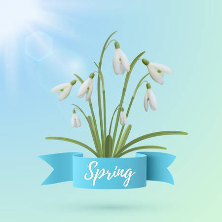sun flowers: Spring background template. Snowdrop flowers with blue ribbon and sun. Vector illustration.