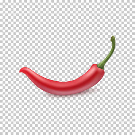 Red chili pepper on transparent background, vector illustration. Vettoriali