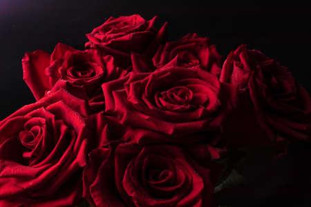 贈り物のための黒い背景に花びらと水の小さな滴の明確なラインと緑豊かな赤いバラの明るい花束。